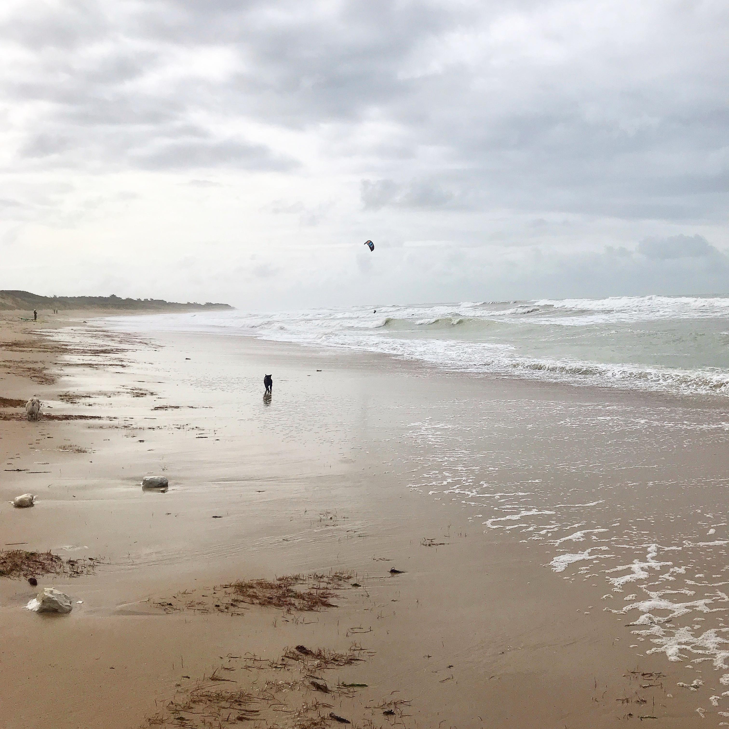 Beach in Ile de Re